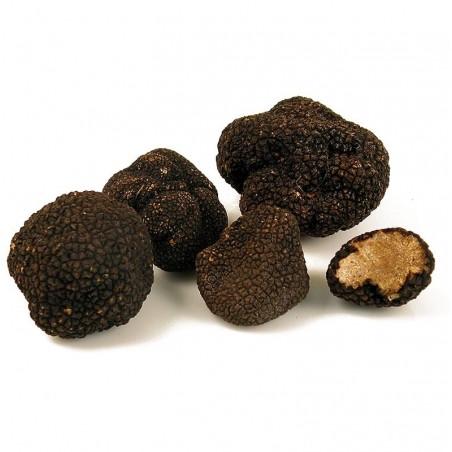 Świeże trufle jesienna z Włoch lub Francji - cena orientacyjna za 25 gram