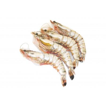 Krewetki olbrzymie morskie 6/8 z głową i z pancerzem, ok. 1.0 kg/opak.