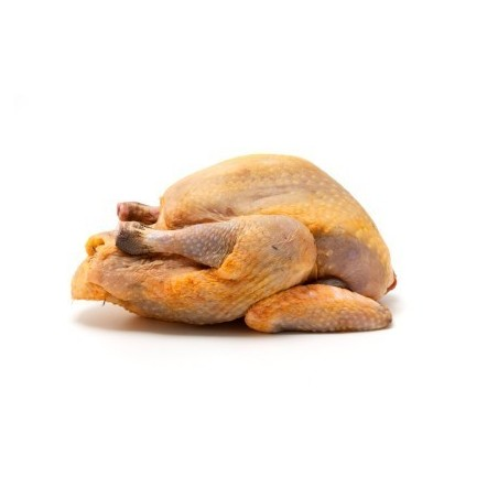 Baby kurczaki, ok. 500g/szt.