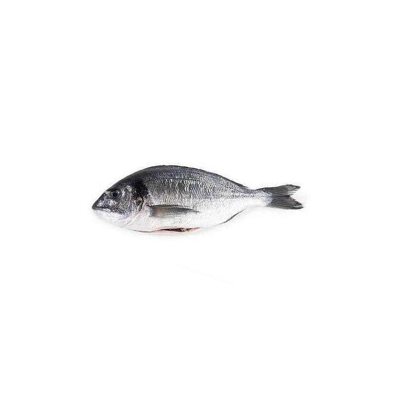 Dorada Królewska Francja, ok. 300-450g/szt, opak 3kg