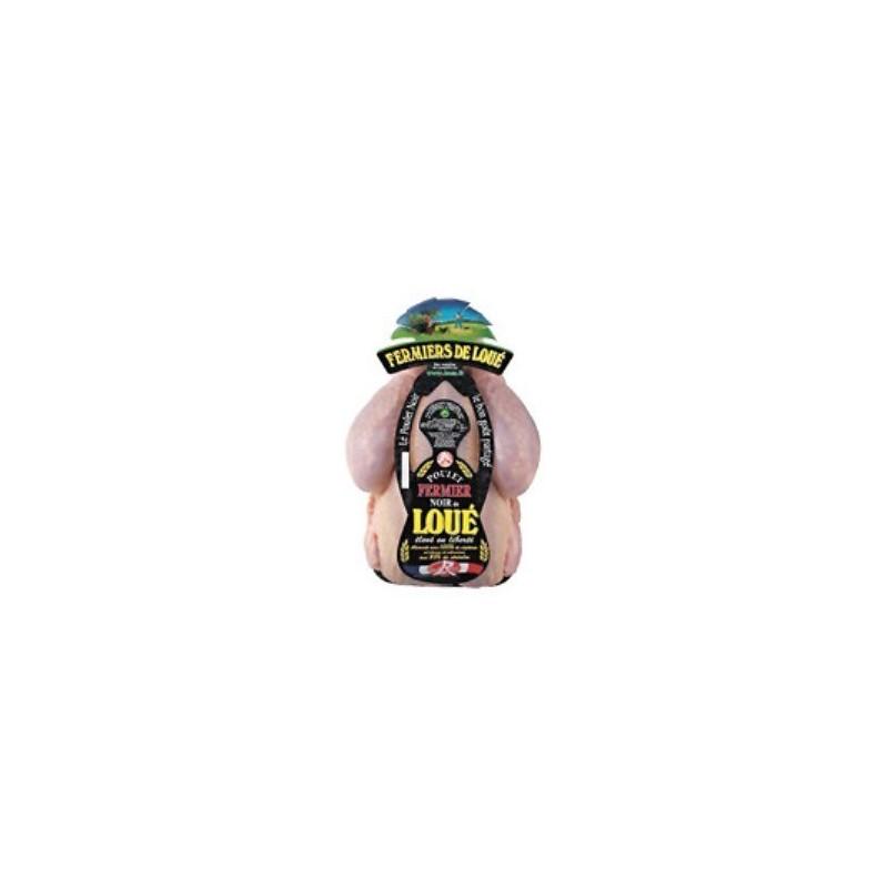 Kura czarnopióra Label Rouge ok. 1,3-1,5 kg/szt