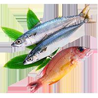Ryby i Owoce Morza - Delikatesy sklep online: świeże ryby